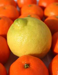Why Is Vitamin C A Natural Skin Booster?